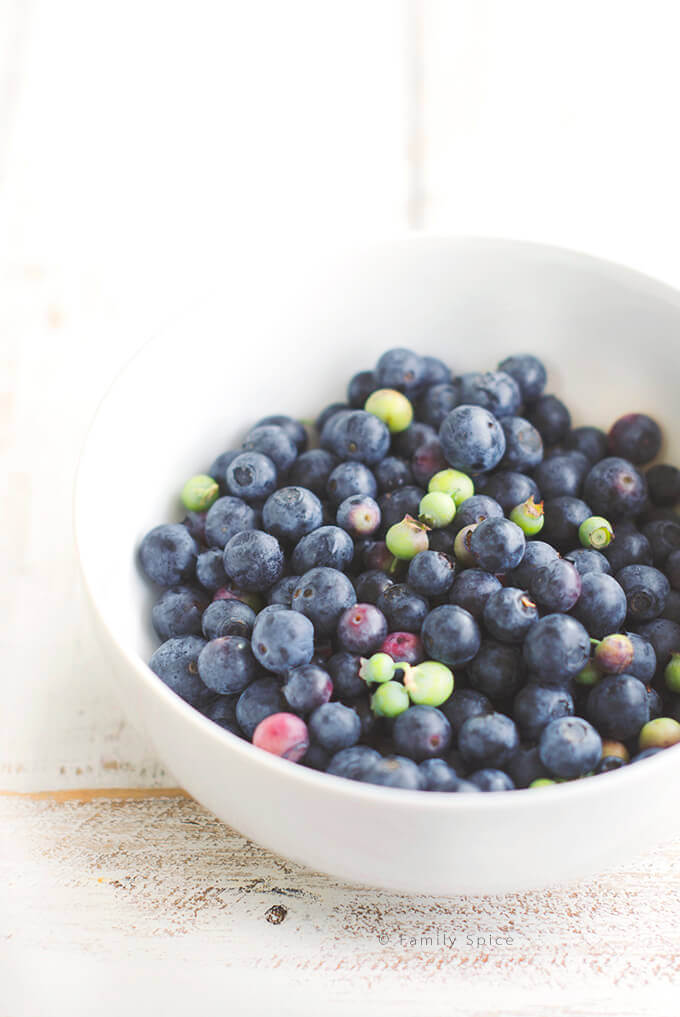 Fresh blueberries in a bowl by Familyspice.com