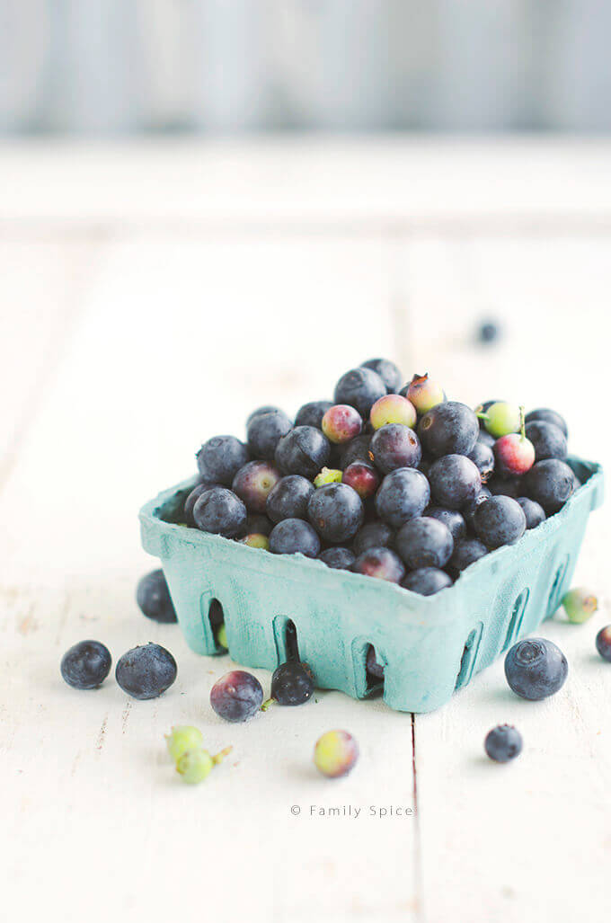 Blueberries in a carton by FamilySpice.com
