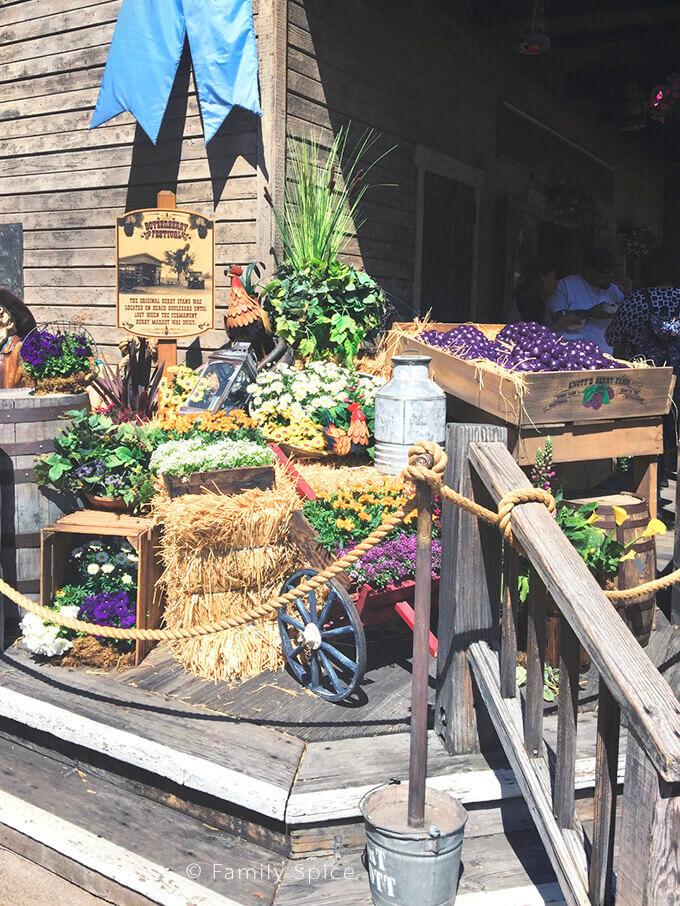 Farm stand during Knott's Berry Farm's Boysenberry Festival - by FamilySpice.com