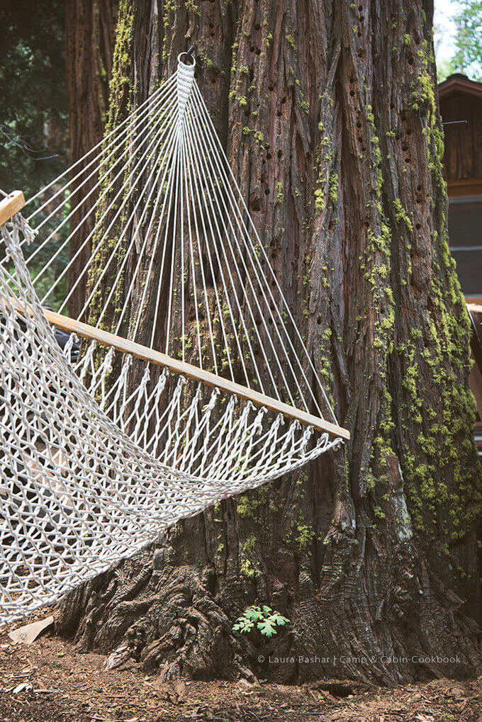Hammock hanging from a moss covered tree by FamilySpice.com