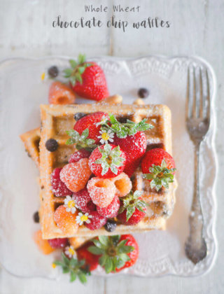 Whole Wheat Chocolate Chip Waffles by FamilySpice.com