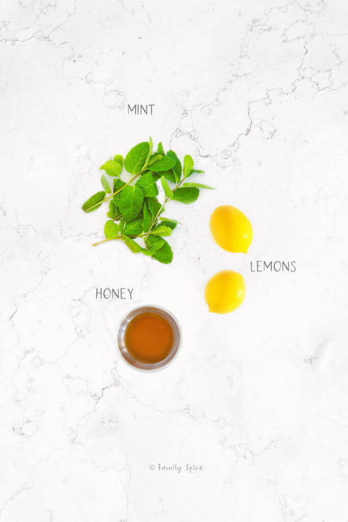 Ingredients labeled and needed to make honey lemonade with mint
