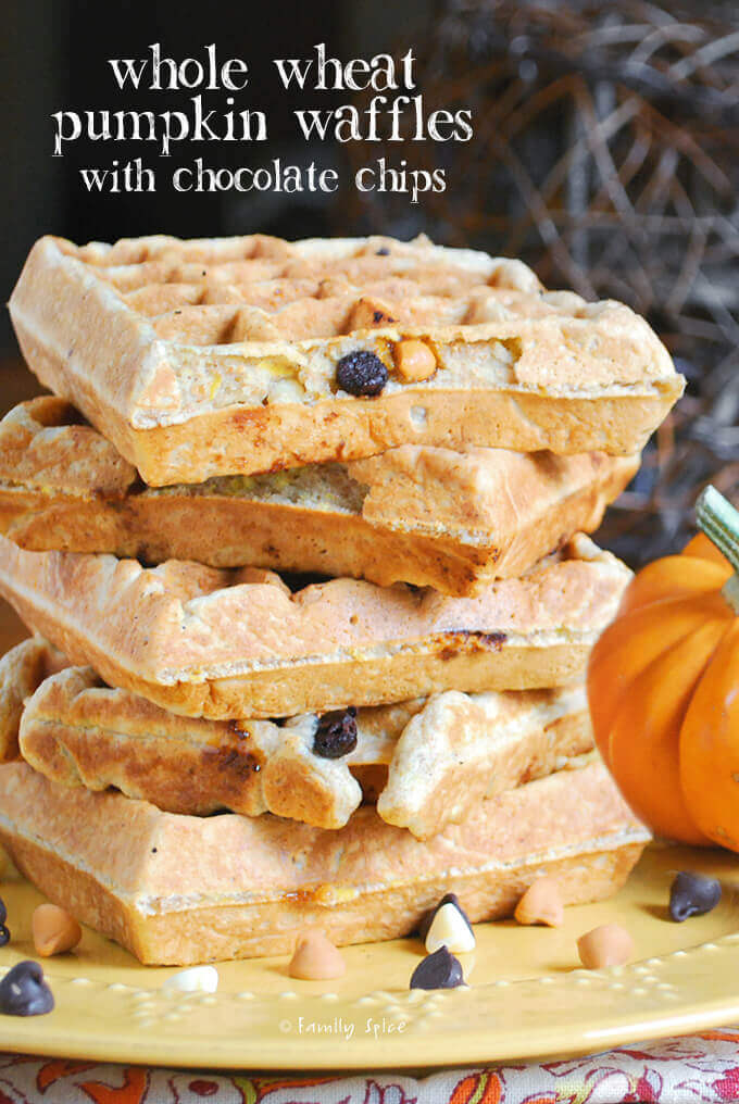 Whole Wheat Pumpkin Waffles with Chocolate Chips by FamilySpice.com
