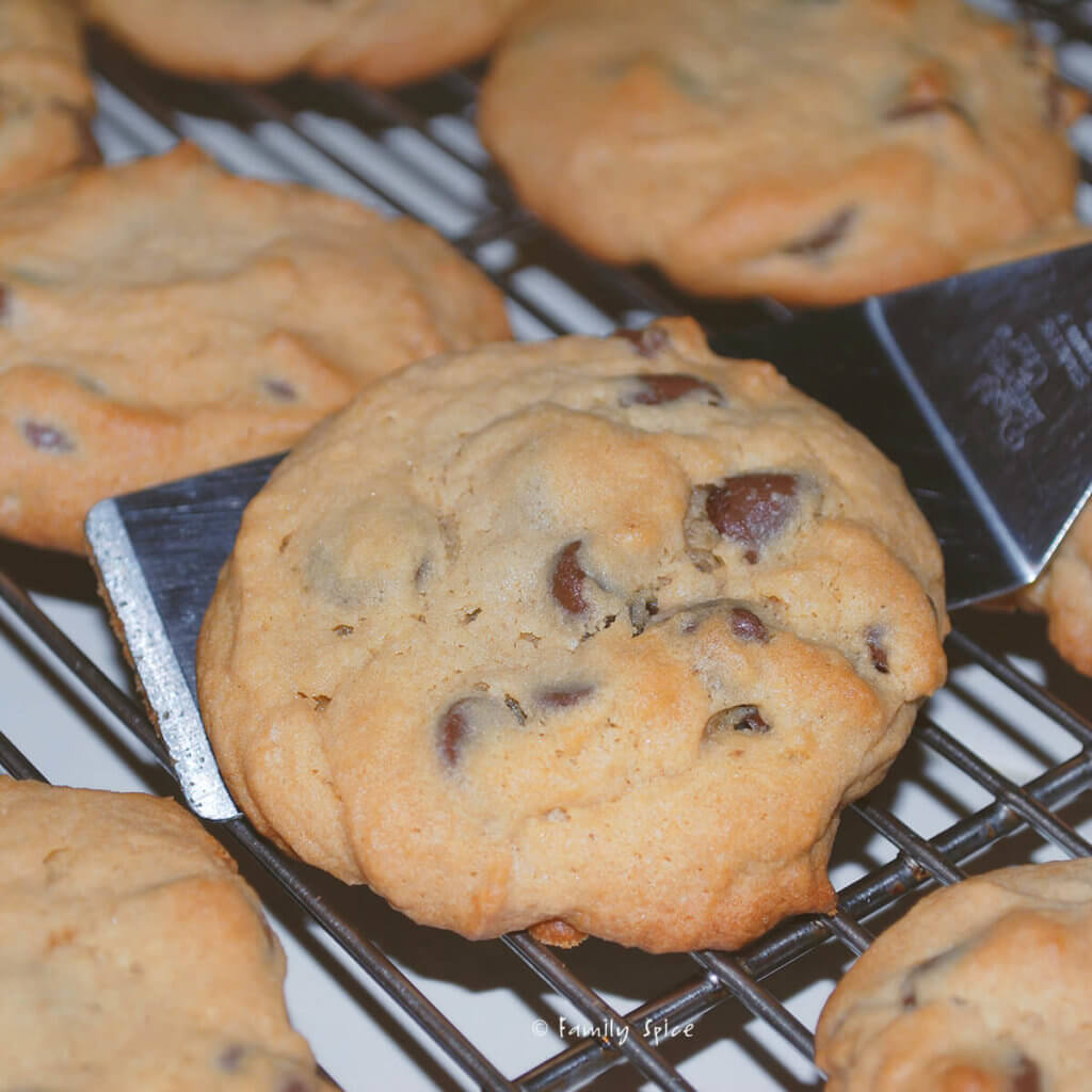 Freshly baked chocolate chip pudding cookies on a cooling rack