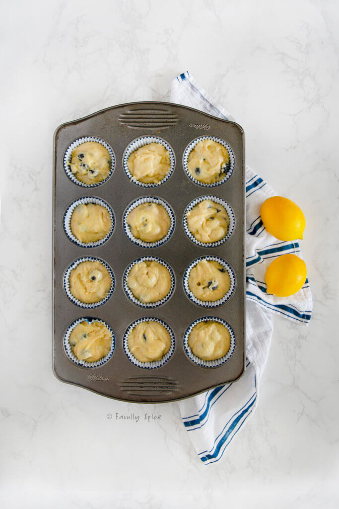 Blueberry muffin batter in cupcake liners in a cupcake pan