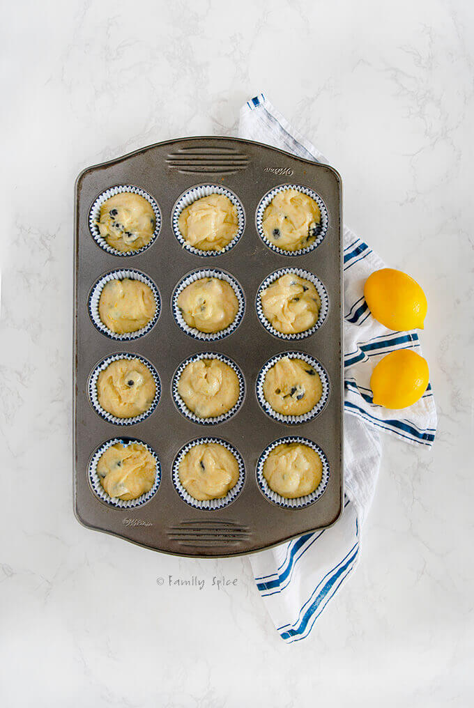 Overhead shot of lemon blueberry muffin batter poured into muffin tin and ready to bake by FamilySpice.com