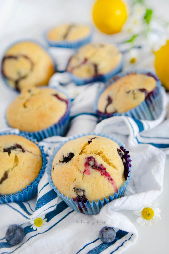 Closeup of several lemon blueberry muffins on a blue striped dish towel