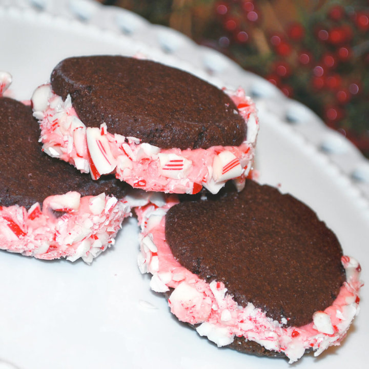 Chocolate Peppermint Sandwich Cookies by FamilySpice.com