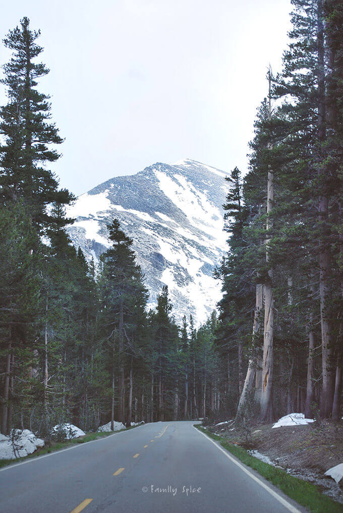 Tioga Pass and The Best Gas Station Food... EVER! by FamilySpice.com