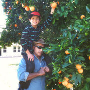 Picking oranges in Valley Center, California by FamilySpice.com