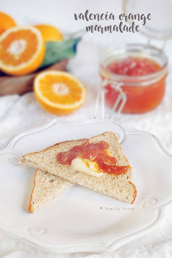 Valencia Orange Marmalade by FamilySpice.com