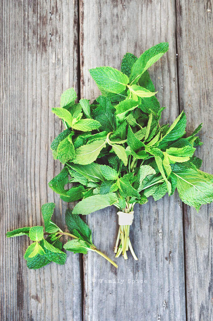 A bundle of fresh mint by FamilySpice.com