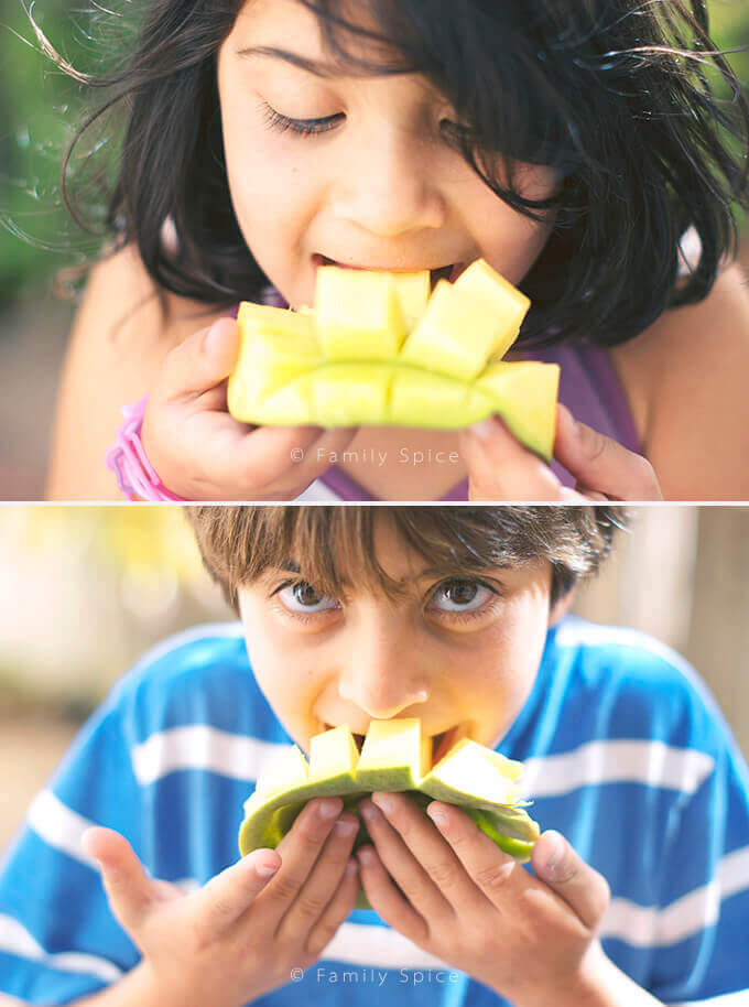 My kids eating mango flowers by FamilySpice.com