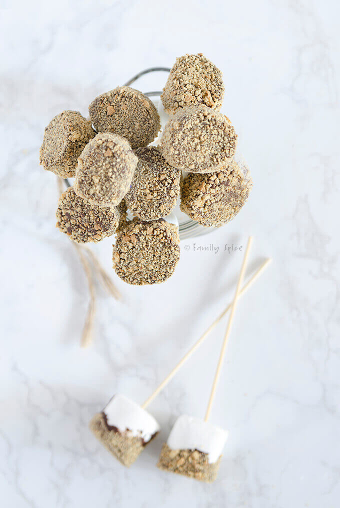 Overhead shot of s'mores on a stick by FamilySpice.com
