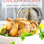 60+ Leftover Chicken Recipes by FamilySpice.com