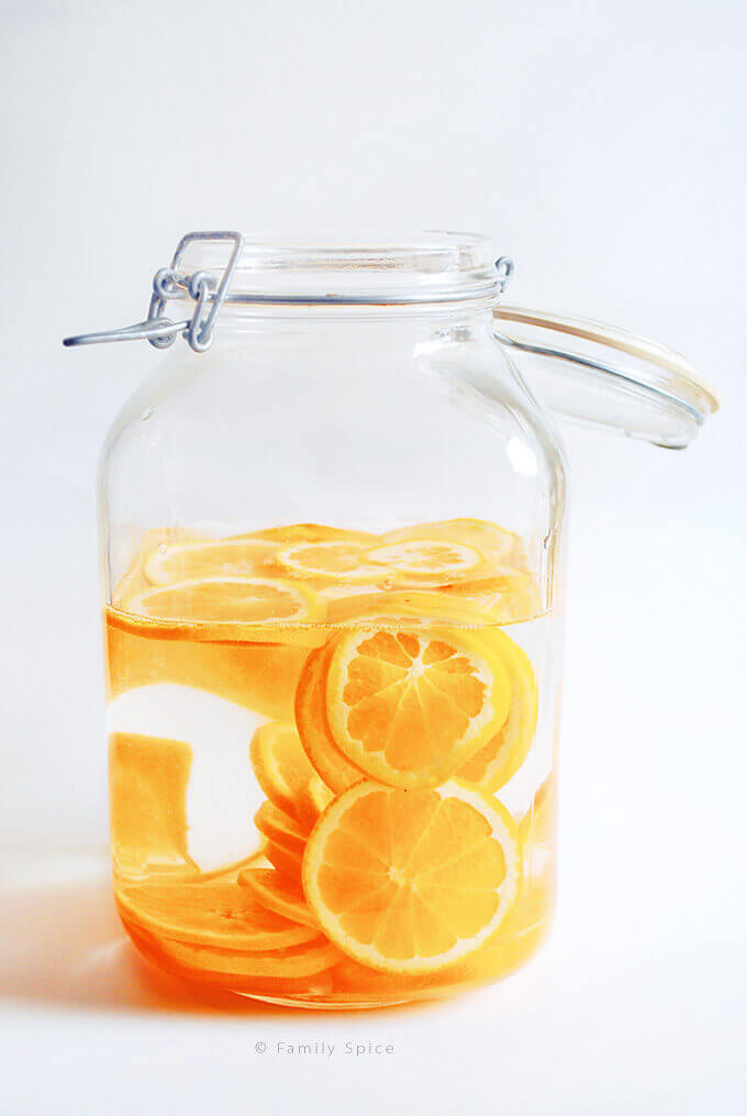 Orange slices infused in vodka by FamilySpice.com