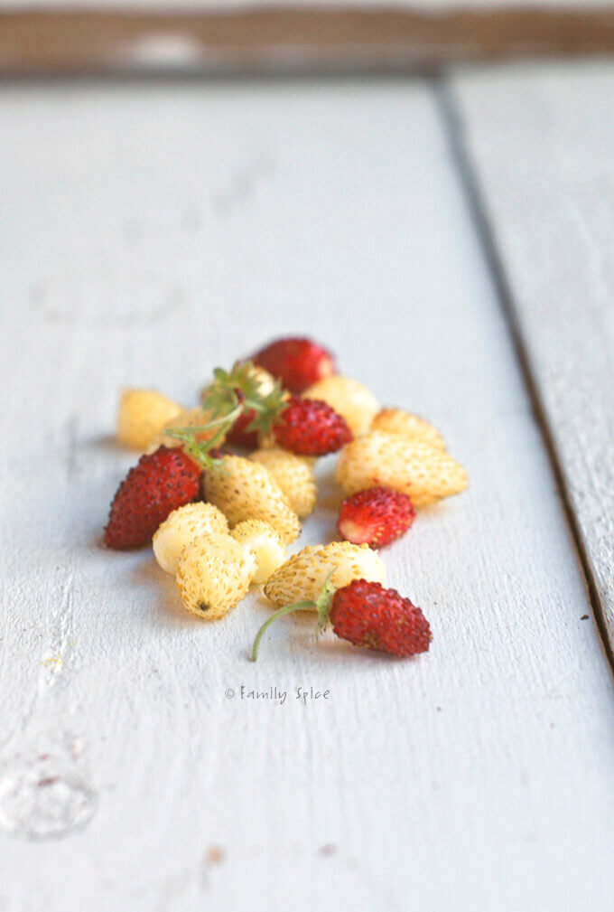 Mini Heirloom Strawberries by FamilySpice.com