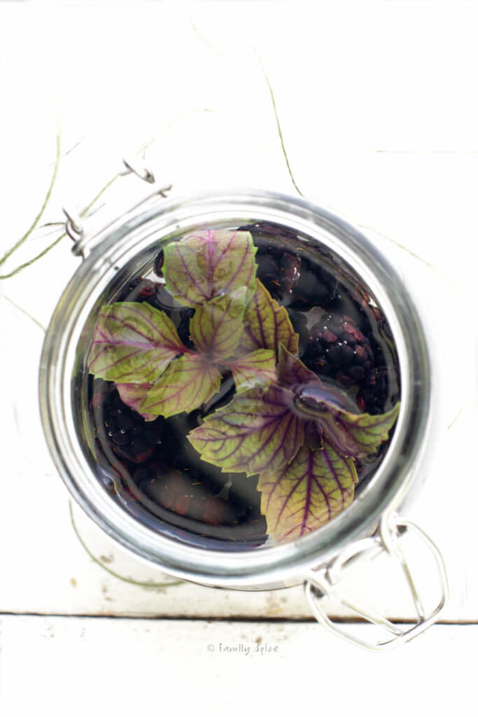 Top view of a mason jar with clear rum, blackberries and purple basil in it