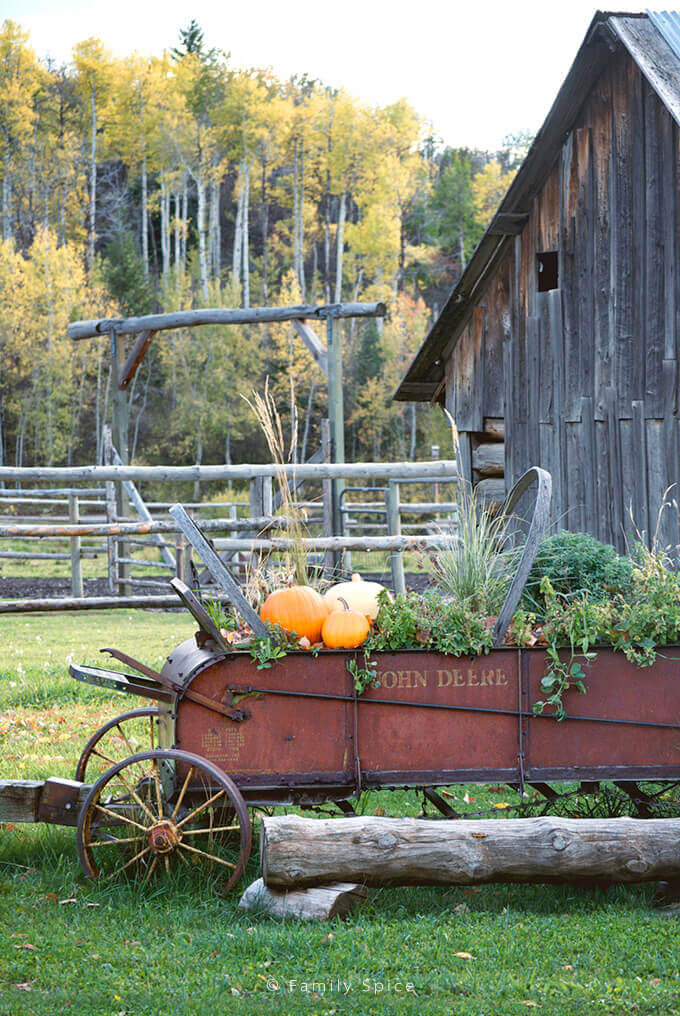 Antique John Deere Wagon with Pumpkins and Greens by Barn in Idaho by FamilySpice.com