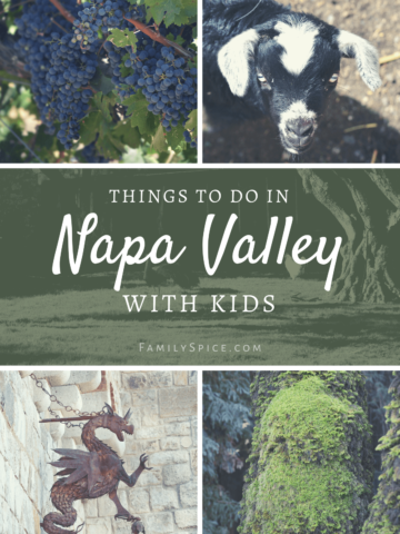 Collage of things to do in Napa with kids
