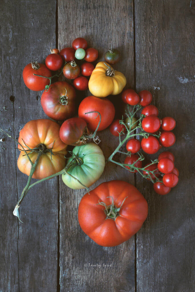 A variety of tomatoes of different sizes and colors on a dark wood background