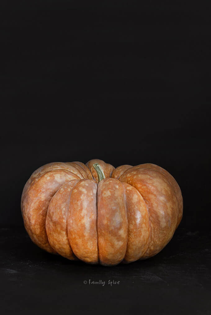 A big orange cinderella pumpkin by FamilySpice.com