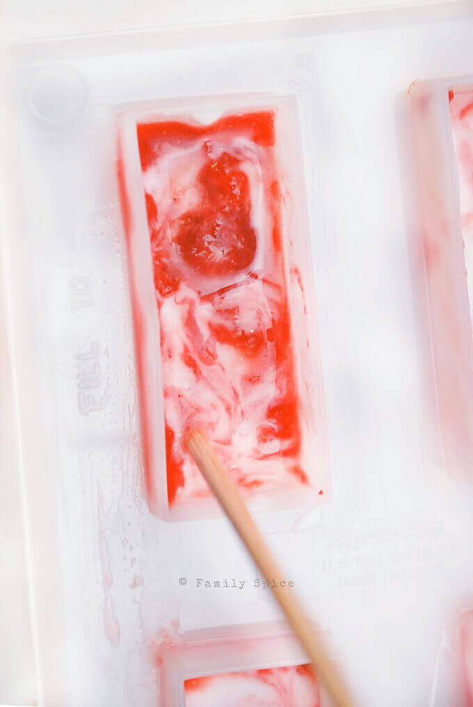 Making Strawberry Rhubarb Creamsicles by FamilySpice.com