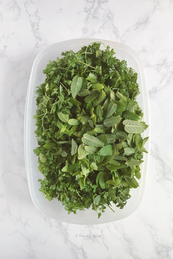 Top view of a tub with fresh parsley and fresh mint