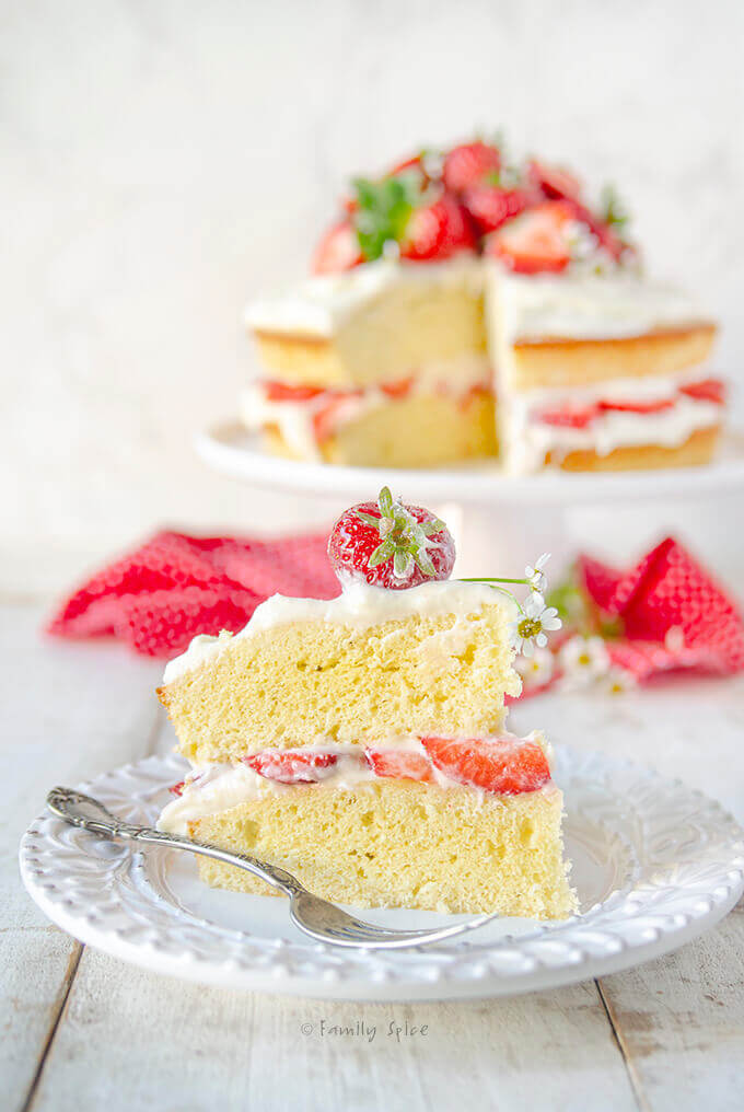 A slice of olive oil vanilla cake frosted and stuffed with fresh strawberries by FamilySpice.com