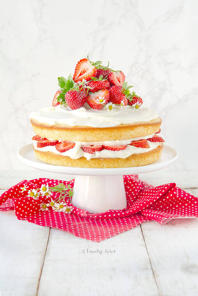 A 9-inch round olive oil vanilla cake frosted and stuffed with fresh strawberries by FamilySpice.com