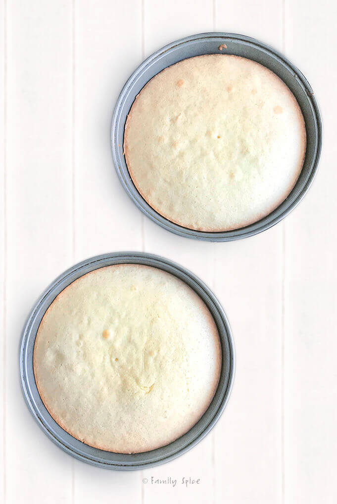 Freshly baked olive oil vanilla cake in 9-inch cake pans by FamilySpice.com