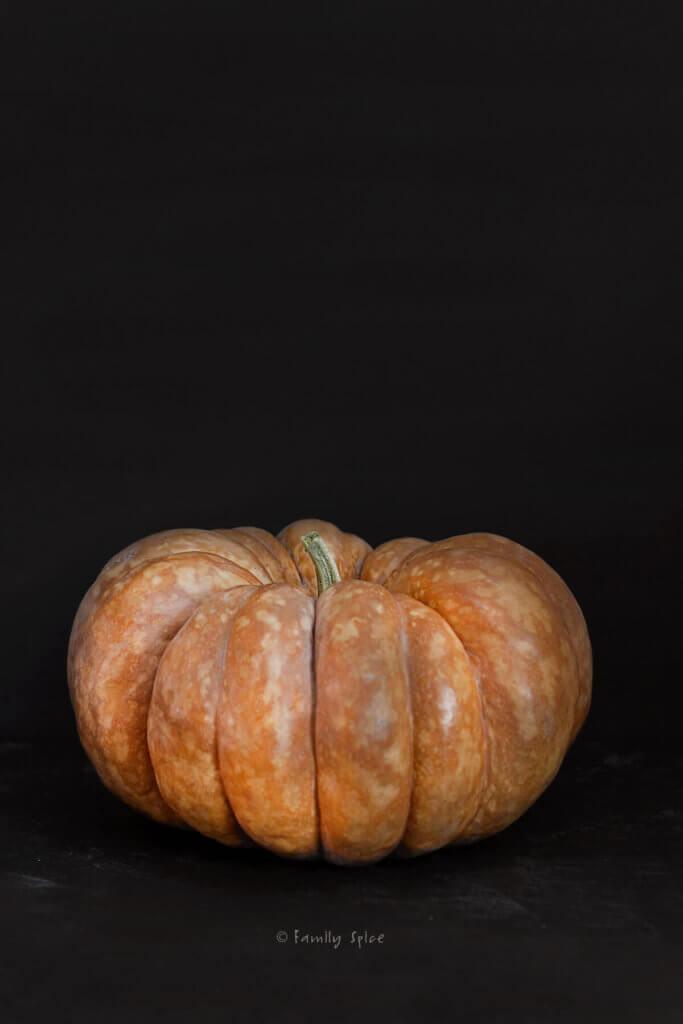 A cinderella pumpkin on a dark background