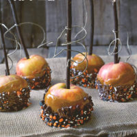 Classic Caramel Apples