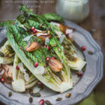 Closeup of a dish with Grilled Caesar Salad with pomegranate, pepitas and shallots by FamilySpice.com