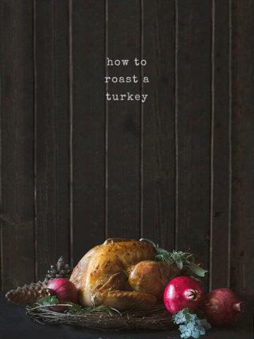 How to Roast a Turkey by FamilySpice.com