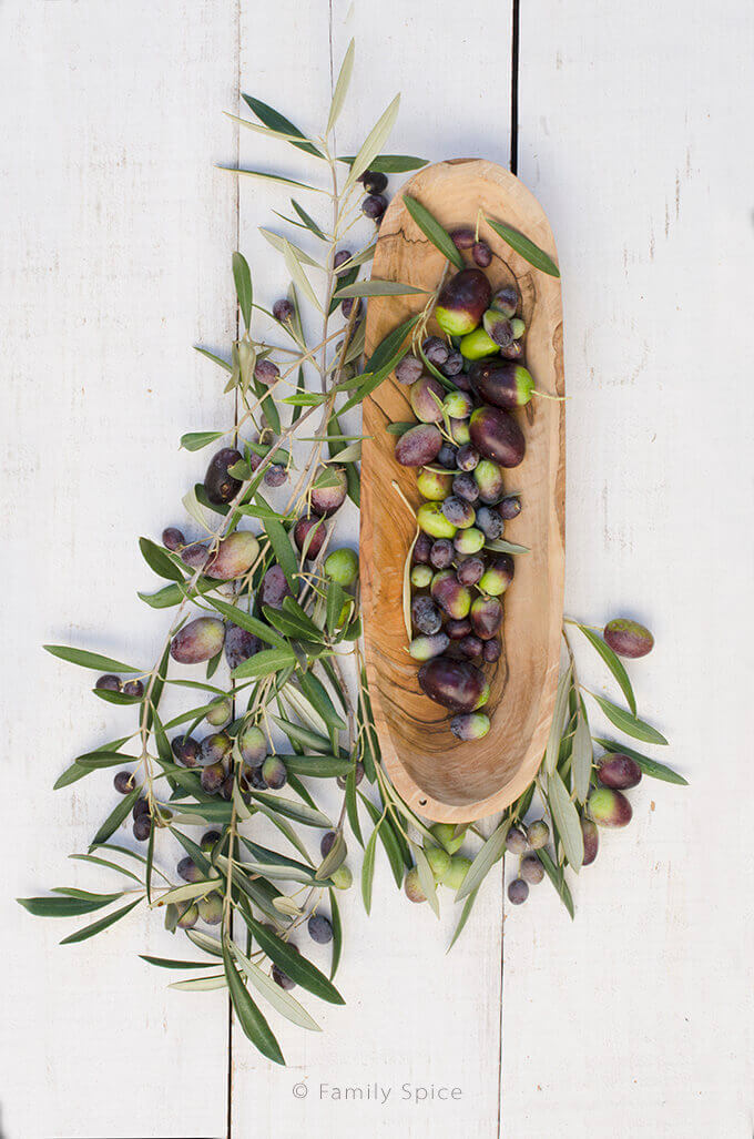 A wooden oblong tray filled with fresh olives and surrounded by olive branches and more olives