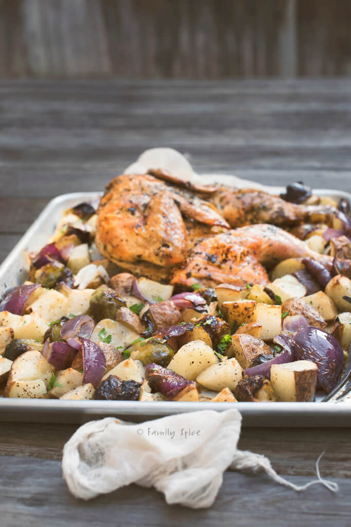 Side view of a baking sheet with a spatchcocked chicken roasted with potatoes, red onions and Brussels sprouts