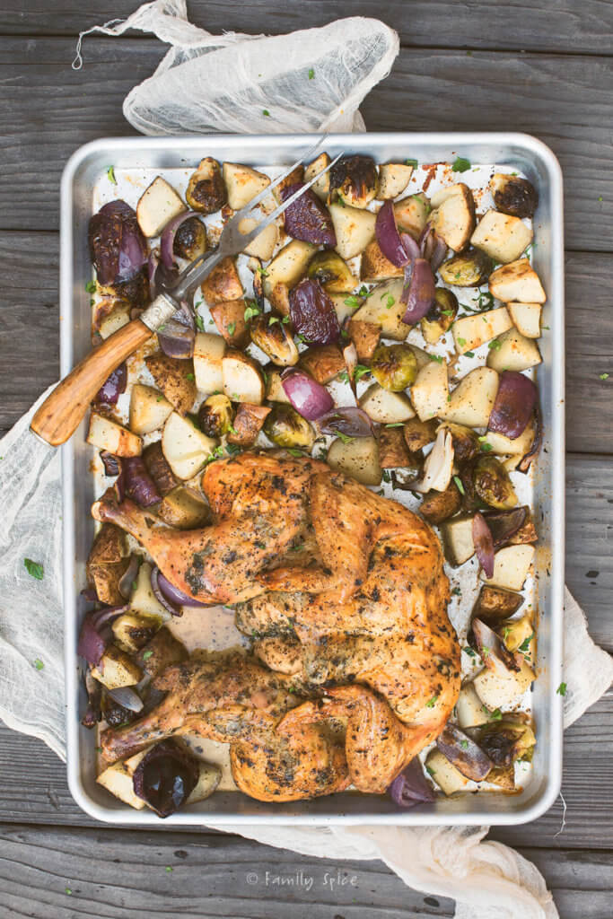 Top view of a baking sheet with a spatchcocked chicken roasted with potatoes, red onions and Brussels sprouts