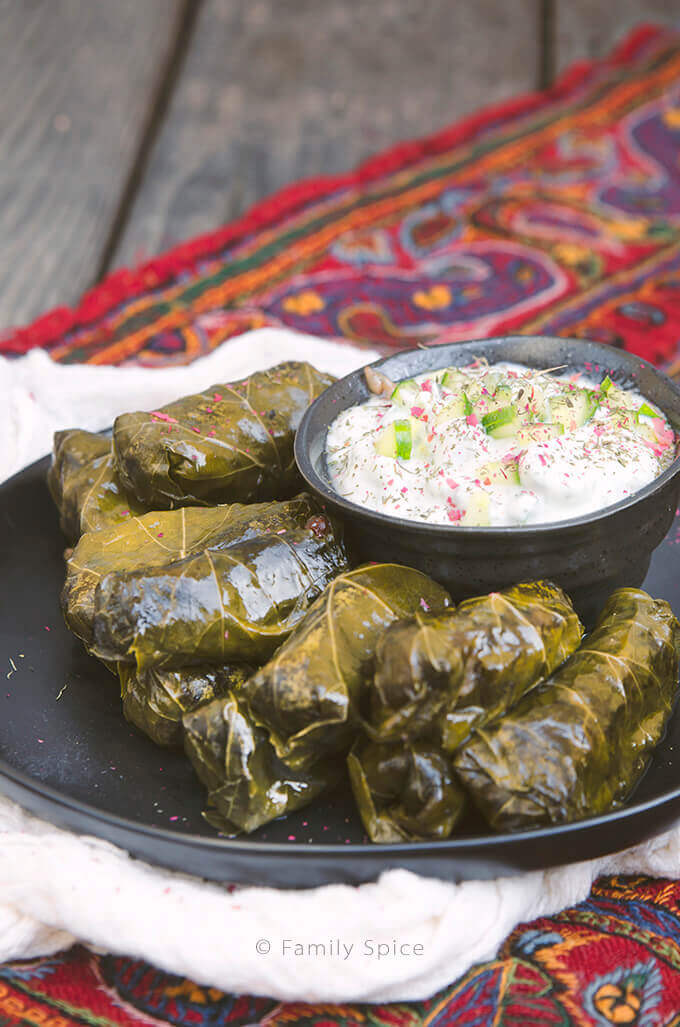 Side view of a plate full of Persian dolma (or dolmeh/dolmades), stuffed grape leaves with a bowl of yogurt dip - FamilySpice.com