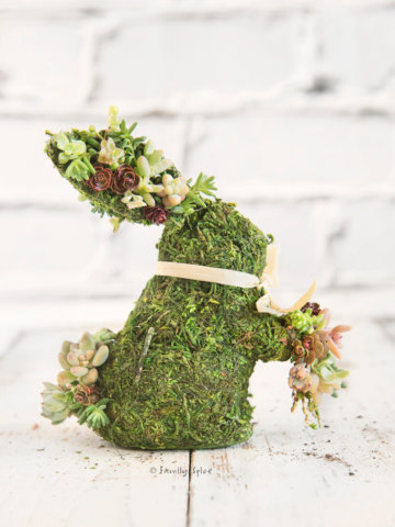 A moss covered bunny studded with mini succulents