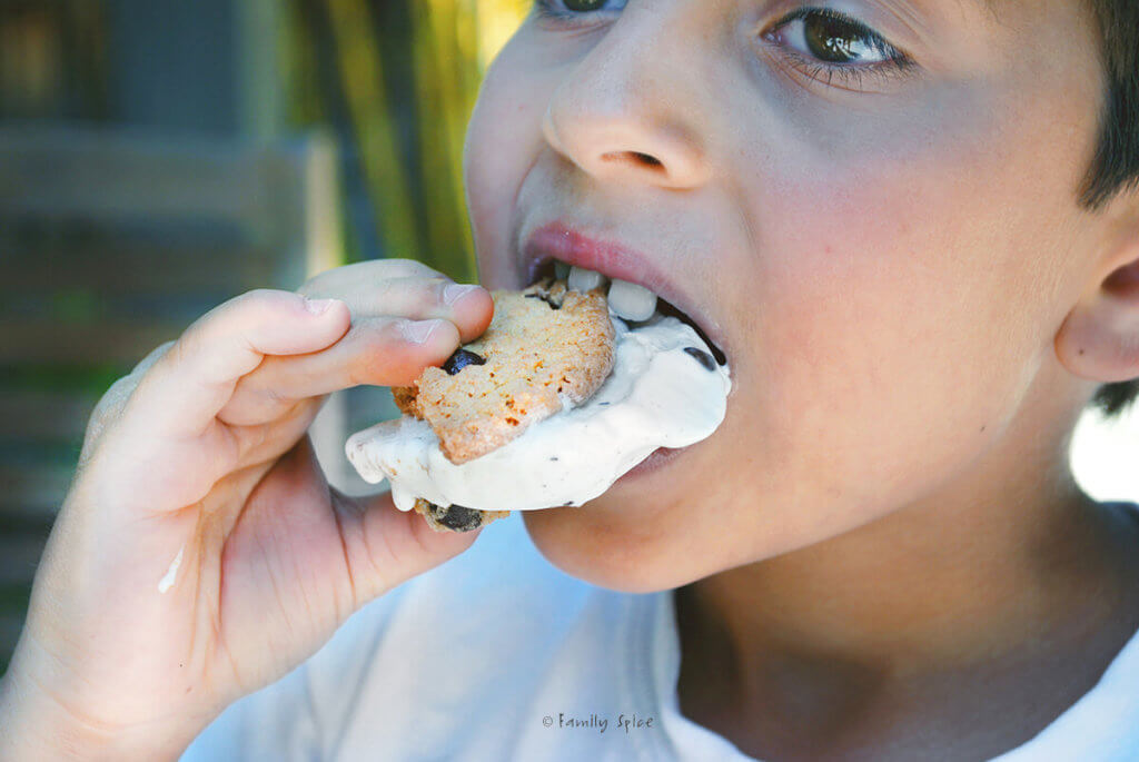 Boy eating a chocolate chip cookie ice cream sandwich
