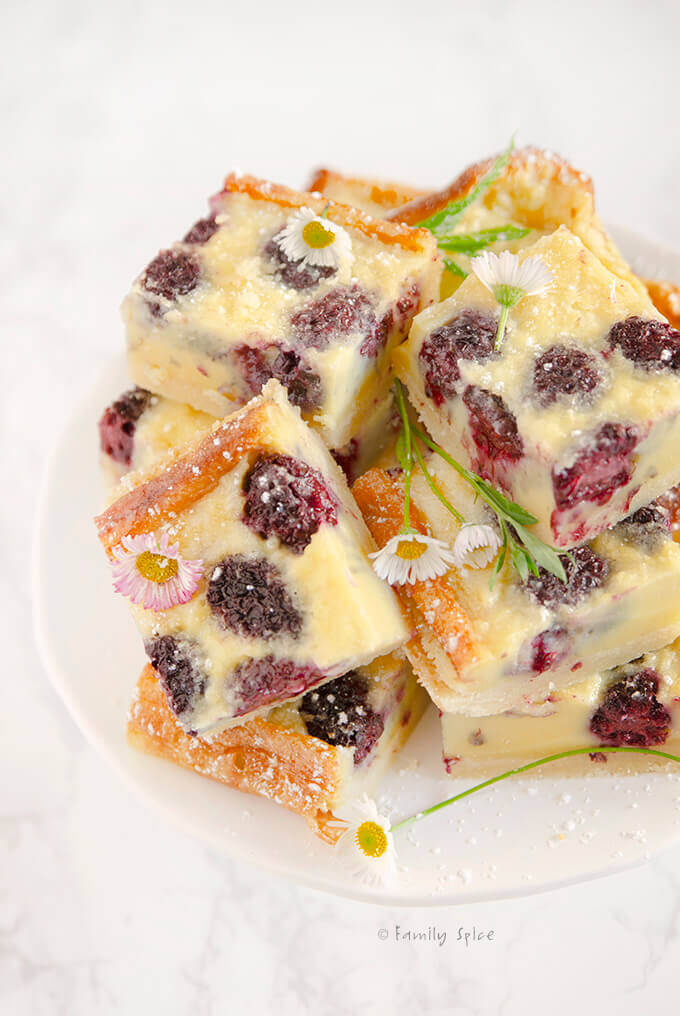 Closeup shot of a stack of blackberry custard bars by FamilySpice.com
