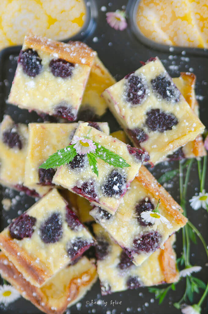 Overhead shot and closeup of blackberry custard bars by FamilySpice.com