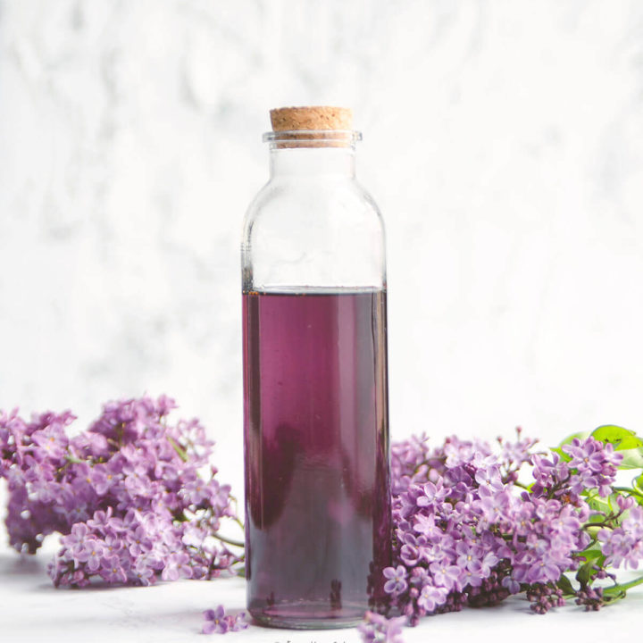 Closeup of a bottle of homemade lilac syrup surrounded by lilacs