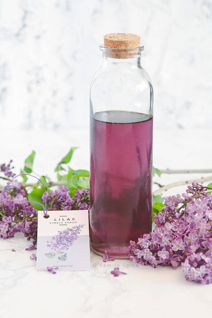 A tall bottle of homemade lilac syrup by FamilySpice.com