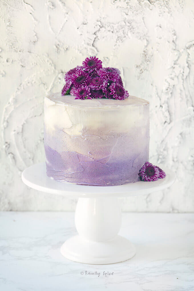 Frosted purple grape kool aid ombre cake on a white cake pedestal topped with purple baby mums by FamilySpice.com