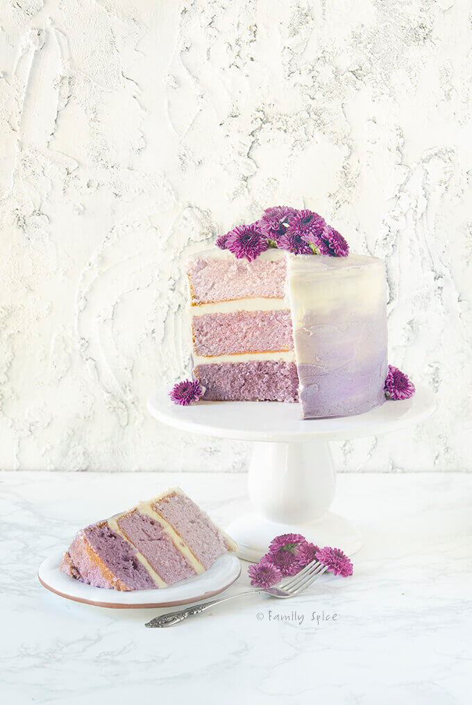 Frosted purple grape kool aid ombre cake with a slice cut out by FamilySpice.com