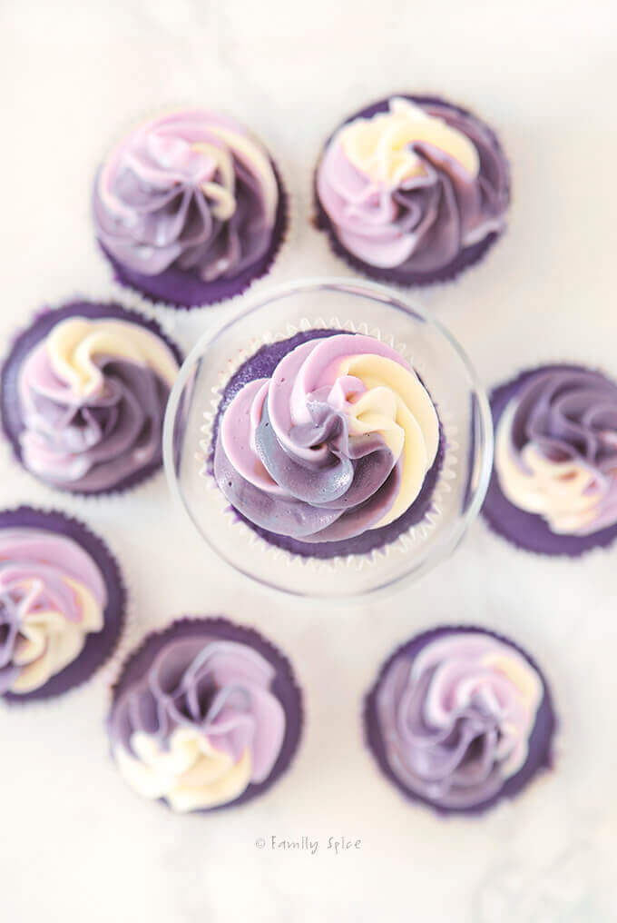 Overhead shot of frosted purple grape kool aid ombre cupcakes by FamilySpice.com