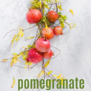 Pomegranate Cookbook by Laura Bashar FamilySpice.com