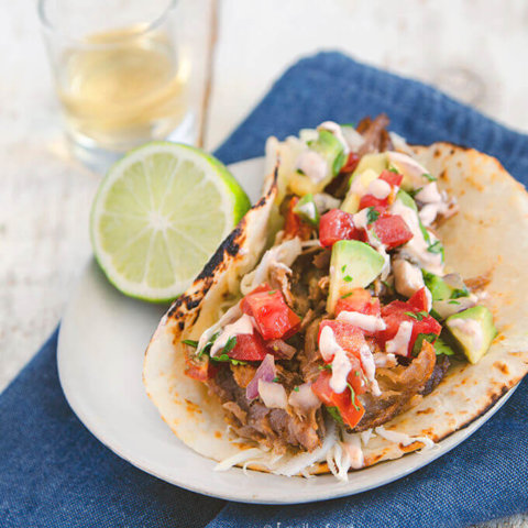 Closeup of a single pulled pork taco in flour tortillas on a small plate by FamilySpicecom